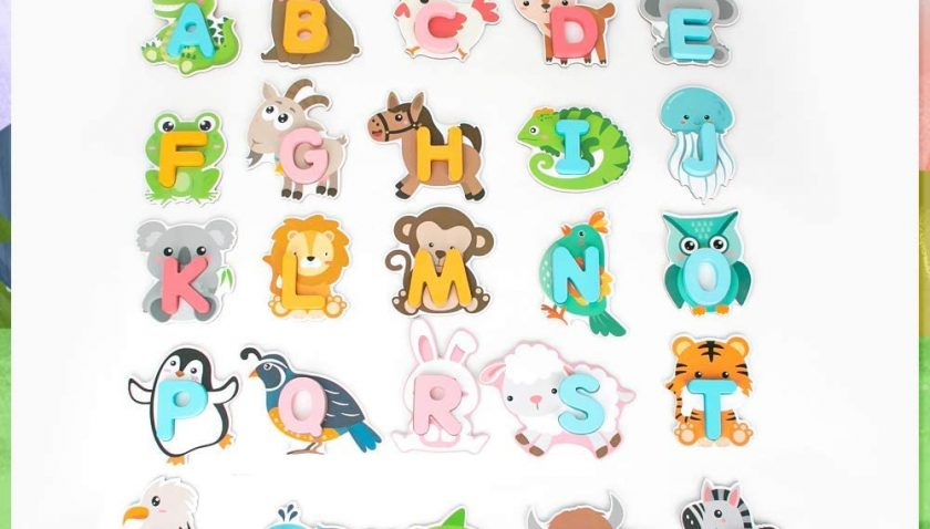 30% Discount for Youwo Alphabet Flash Cards