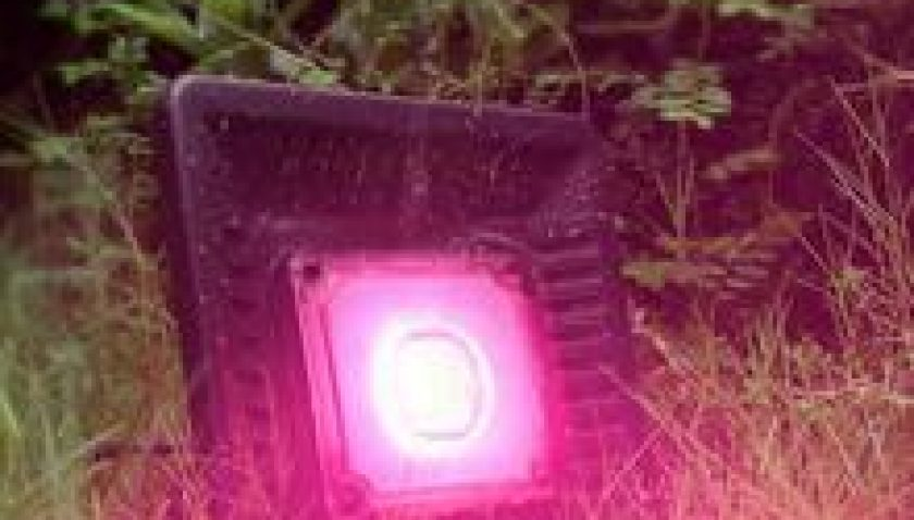 10% Discount for 150W Waterproof Led Grow Light