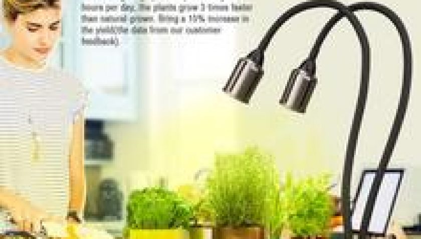 10% Discount for LED Grow Light for Indoor Plants