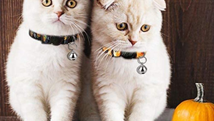 50% Discount for azuza Halloween Cat Collar Breakaway with Bells
