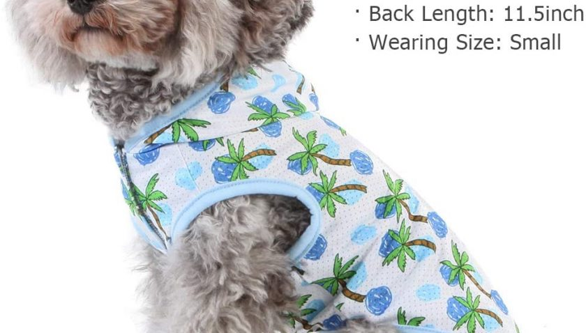 50% Discount for kyeese Dog Shirts with Leash Hole Lightweight Breathable Dog T Shirt for Small Dogs Cat Shirt
