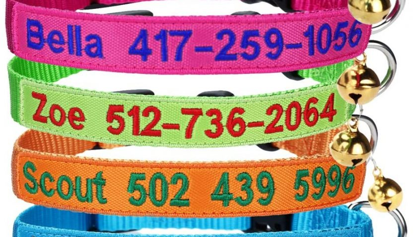 55% off Generies Personalized Cat Collar