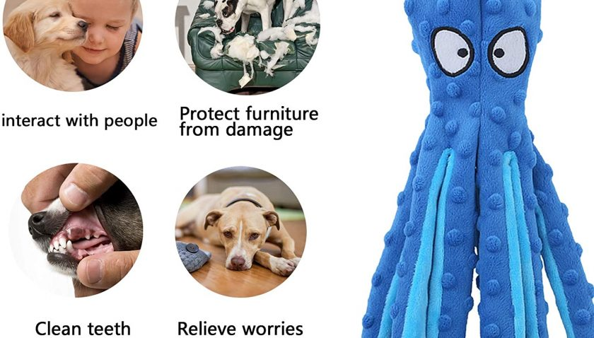 51% Discount for Cnarery Squeaky Dog Toys- No Stuffing Plush Dog Toy