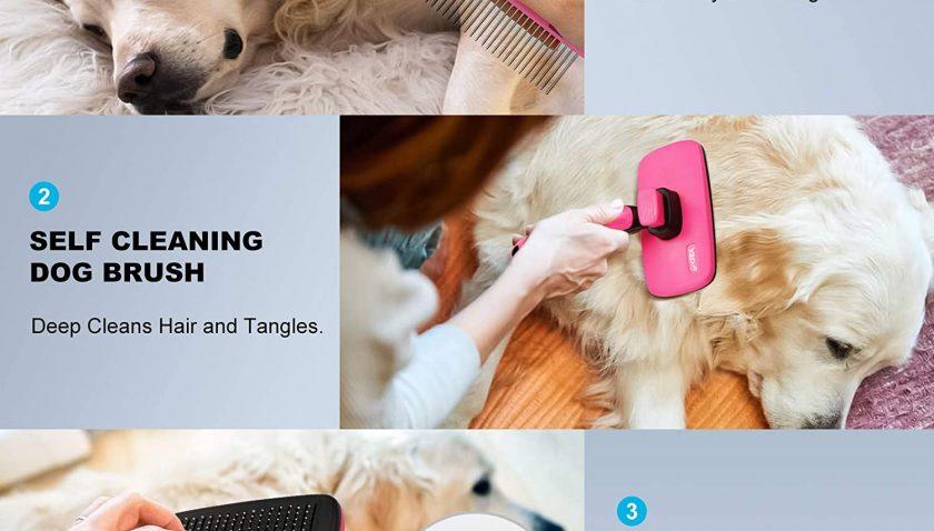 50% Discount for Pet Grooming Brush comb kit Self Cleaning Slicker Cat Brush Dog Brush
