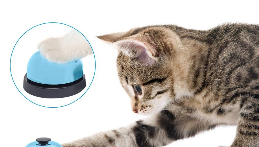 50% Discount for Aoche Pet Training Bells for Dog Cat