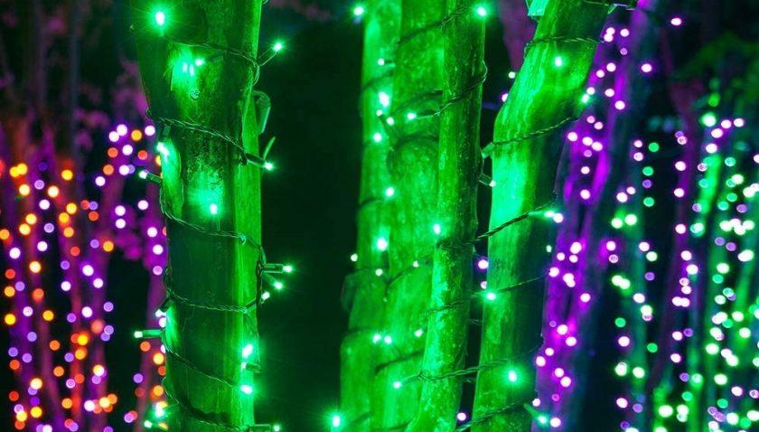 50% Discount for AcaJoe Solar Fairy String Lights