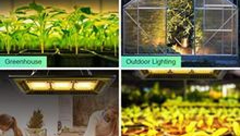 10% Discount for 450W Waterproof Led Grow Light